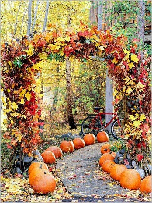 pumpkin lined path