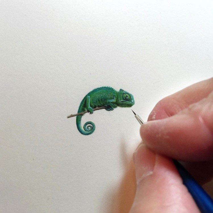 tiny-iguana