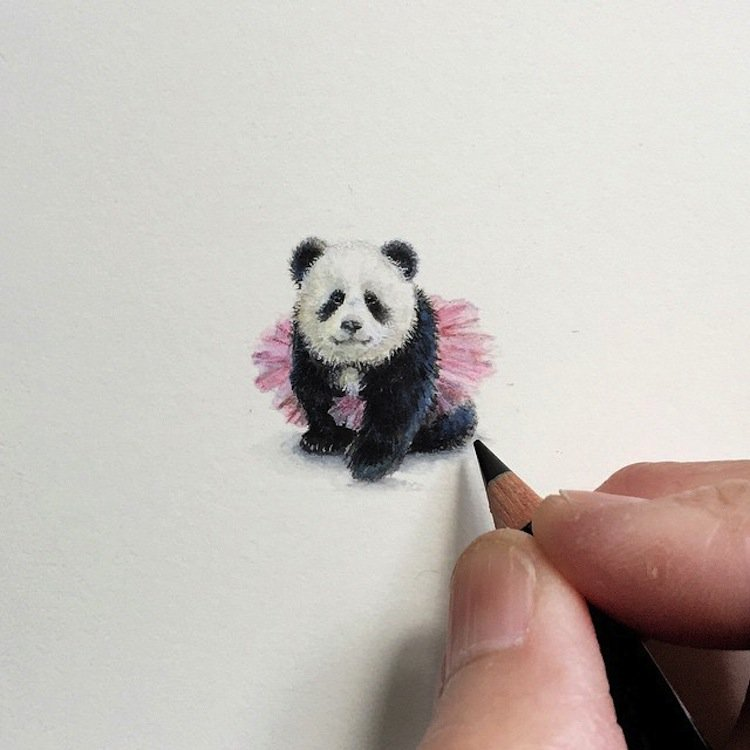 tiny-panda