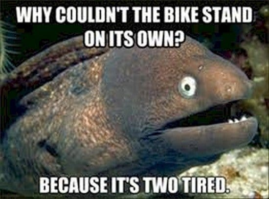why couldnt the bike stand on its own joke on fish background