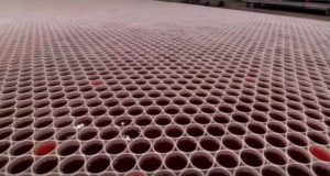 Belo Rainwater Biodegradable Cups Art
