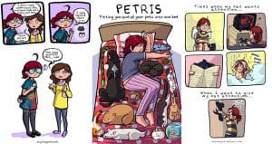 Illustrations Living With Cats