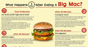 Mcdonalds Big Mac Health Effects