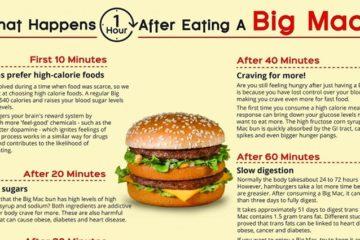 Mcdonalds Big Mac Health Effects