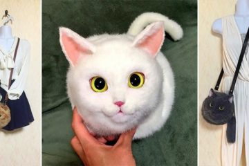 Pico Cat Themed Bags Japan
