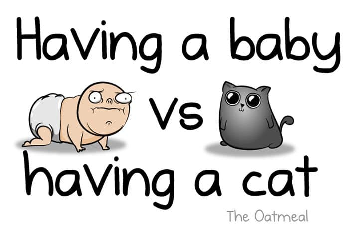 Cartoonist Shows The Hilarious Differences Between Having A Baby And