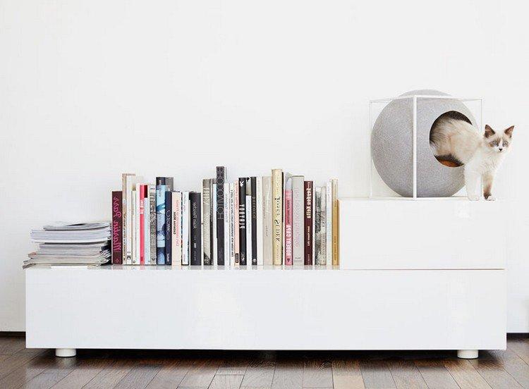 books cat cocoon