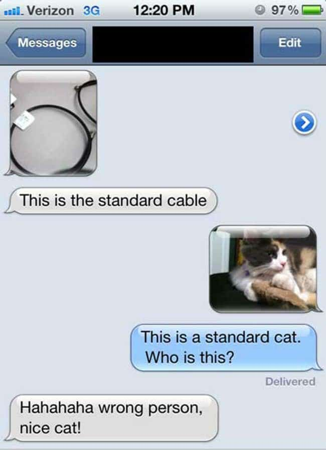 cable cat text