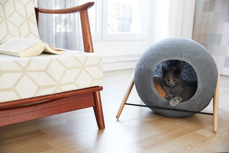 cat cocoon chair