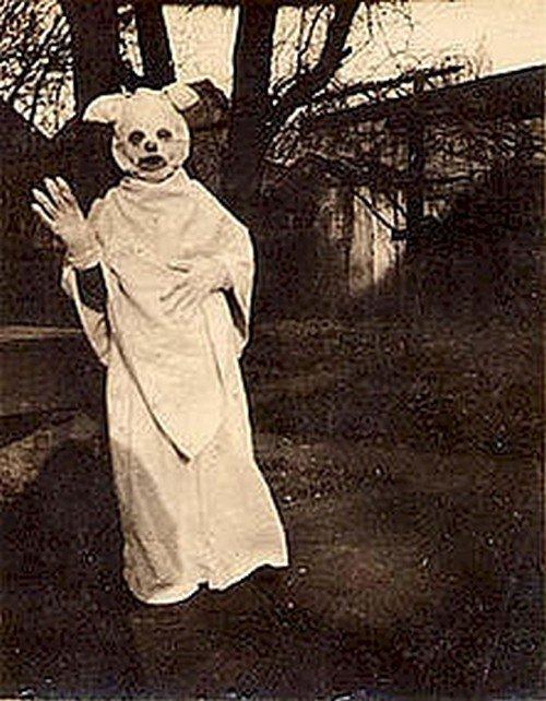 cat gown man