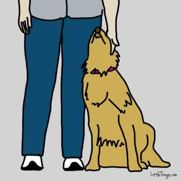 dog-i-love-you-lean