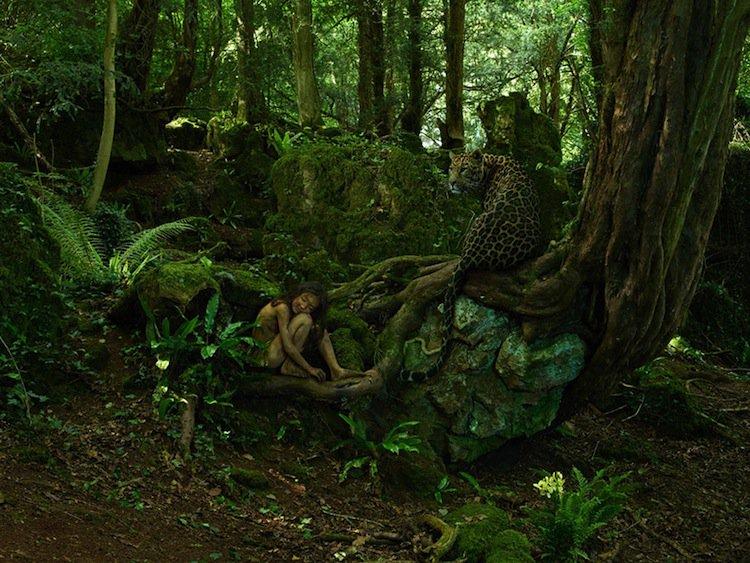 feral-leopard