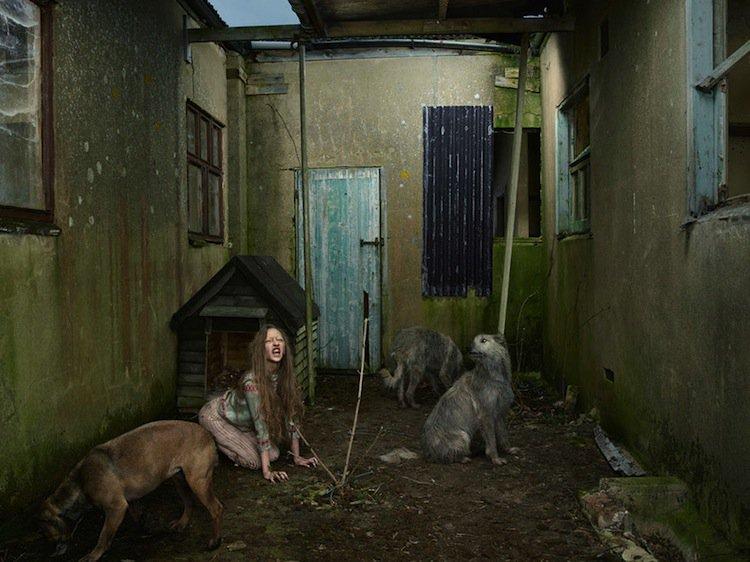 feral-ukraine
