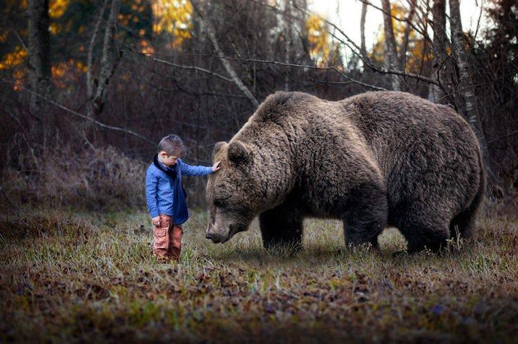 gabe-bear