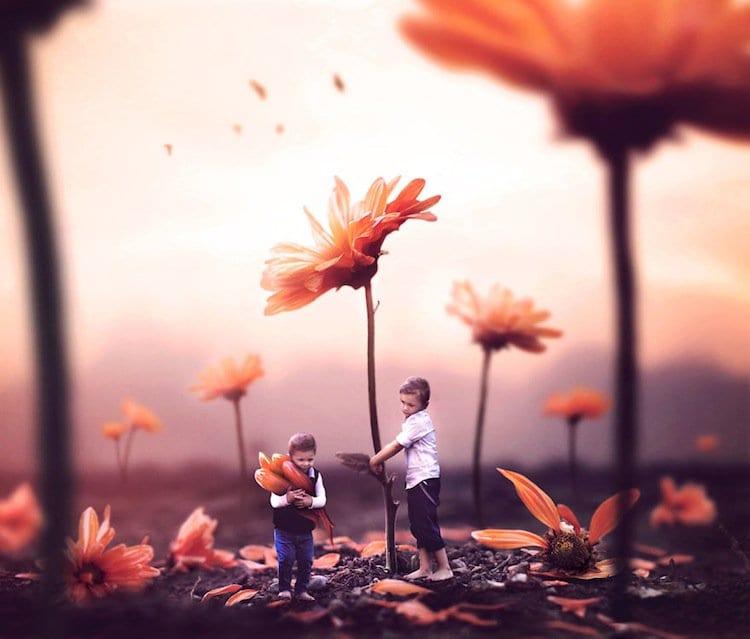 gabe-flowers