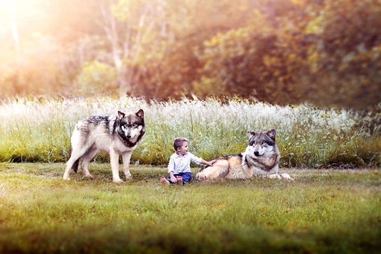 gabe-wolves