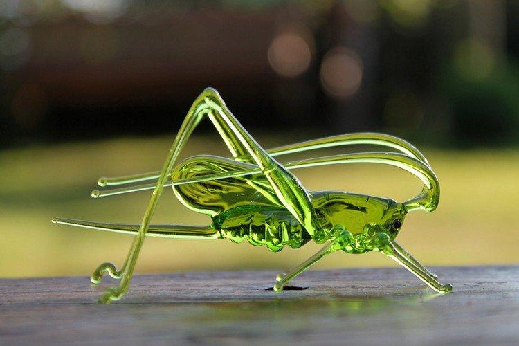 glass grasshopper