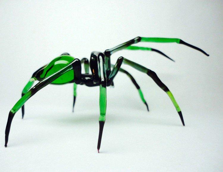 green black spider