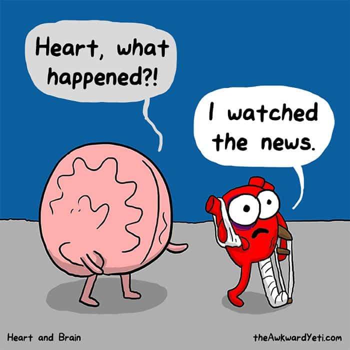 heart-brain