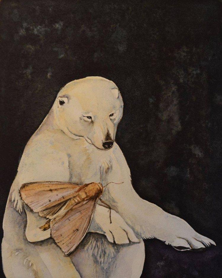 jackie-morris-bear-paintings-moth
