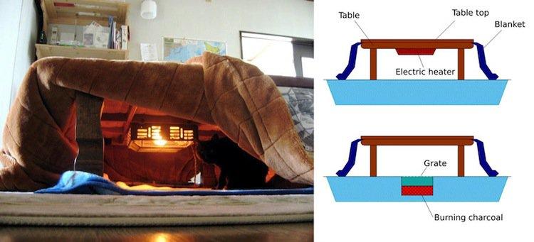 kotatsu-matthew