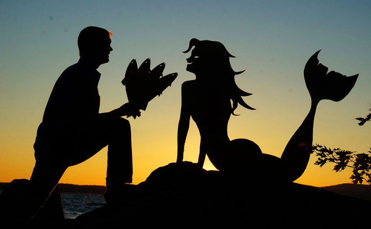 man mermaid fish bouquet silhouette
