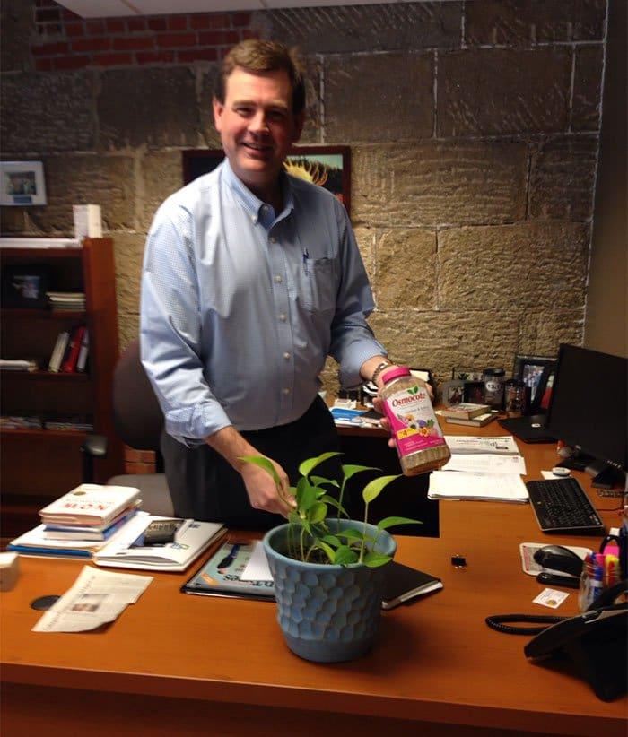 man plant desk