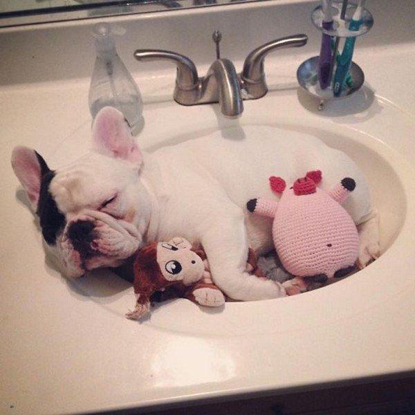 manny sink toys