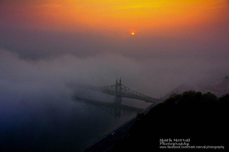 mark-bridge