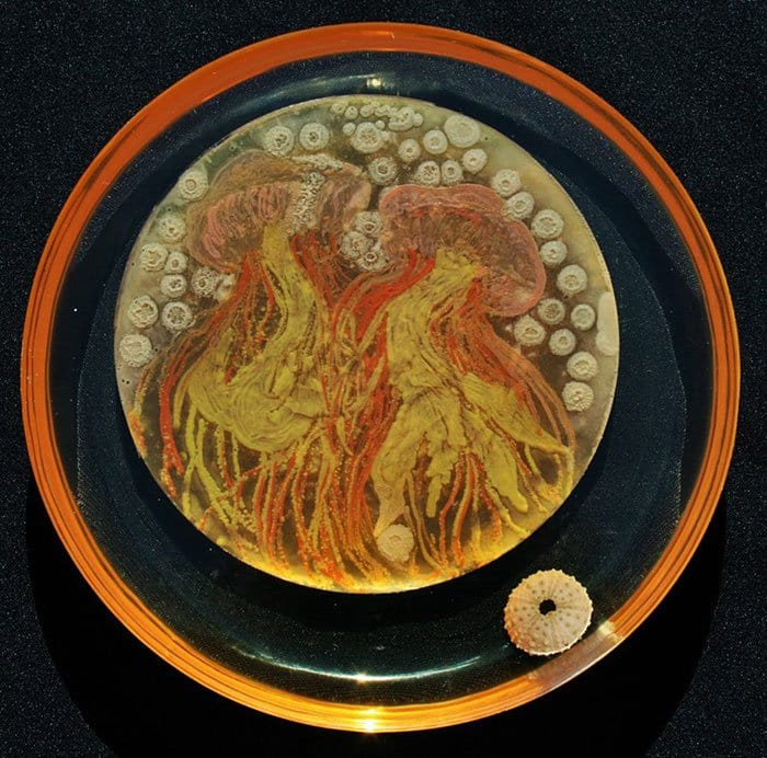 microbe-art-contest-jellyfish