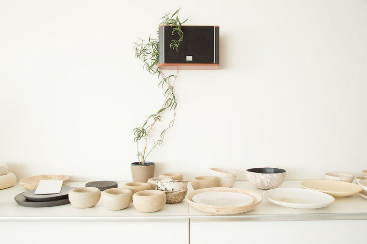 plant and crockery