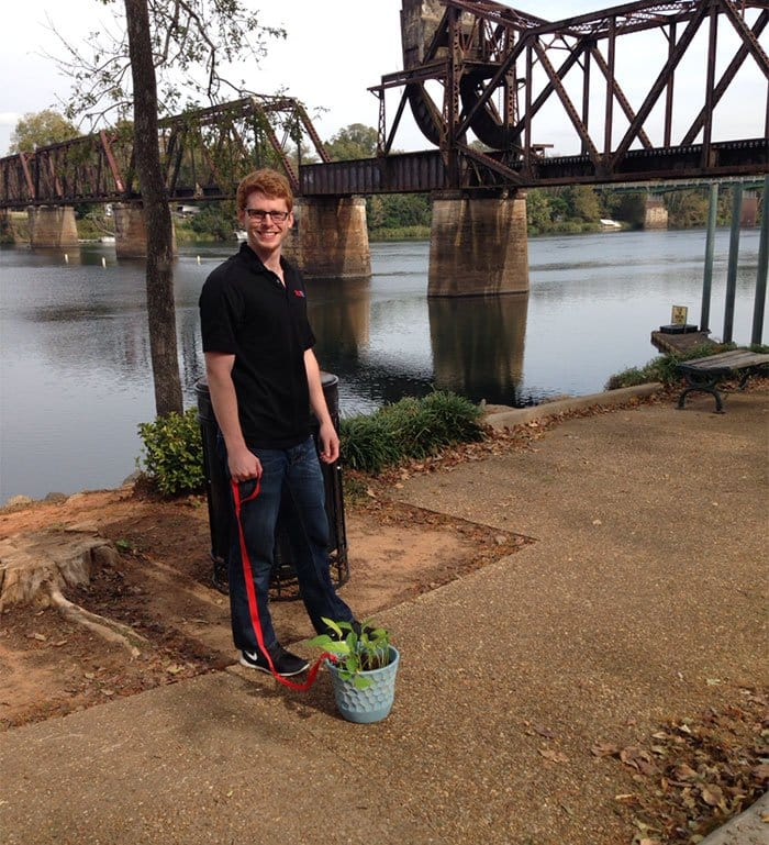 plant lead man