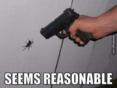 spider gun