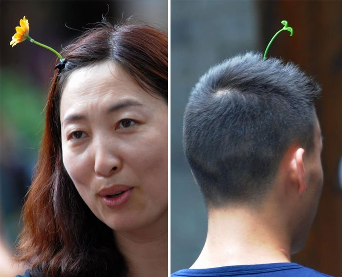 sprout-duo