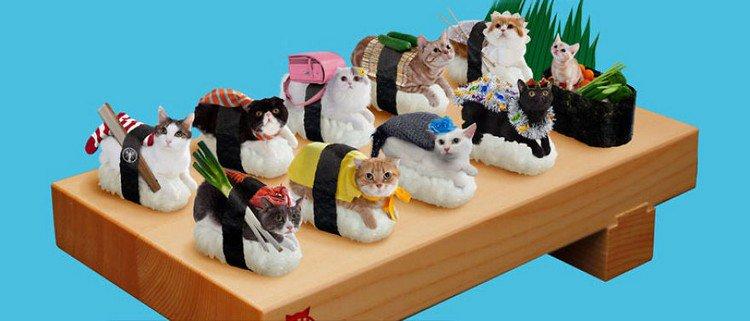 sushi cats board