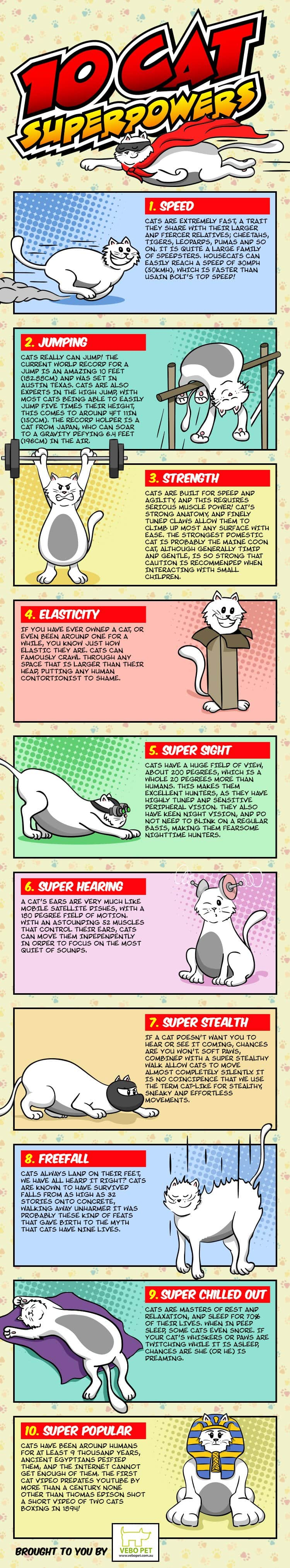 10-cat-superpowers