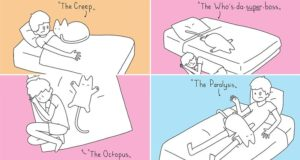 Cats Dominate Sleeping Arrangements