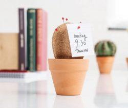 Cork Board Cactus