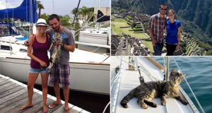 Couple Quit Jobs Cat Sail The World