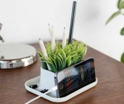 Grass Pen Pot And Phone Stand