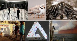 Photo Illusions Unphotoshopped