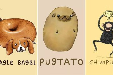 Sophie Corrigan Cute Animal Illustrations Puns
