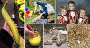 Weird Confusing Photos