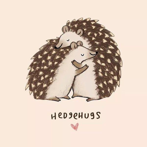 animal-puns-hedgehugs