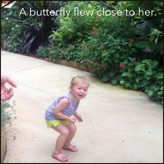 butterfly kid crying