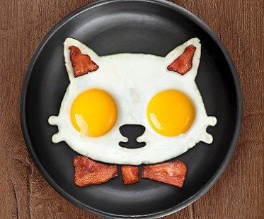 Cat Food Reviews >> Cat Egg Mold