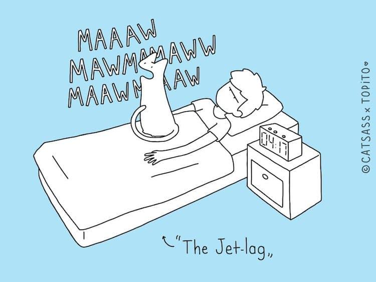 cat-jet