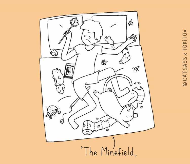 cat-minefield