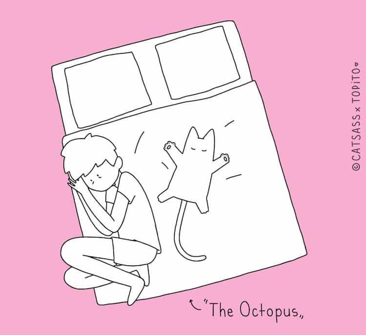 cat-oct