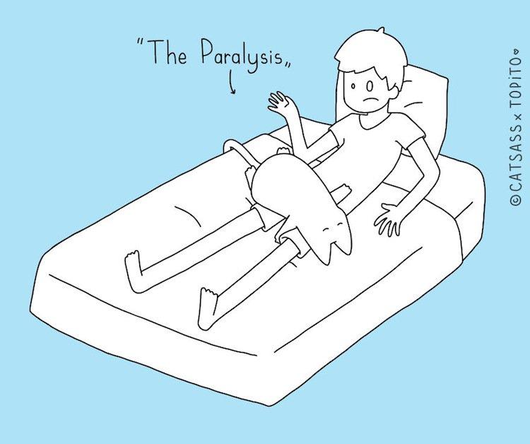 cat-paralysis